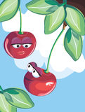 Cherries in love. Vector illustration of cherries in love Stock Image