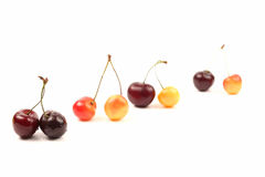 Cherries lying in pairs on white background. The cherries lying in pairs on white background Stock Photography
