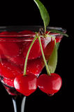 Cherries in a martini glass Royalty Free Stock Images