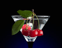 Cherries in a martini glass. Clipping path Stock Photos