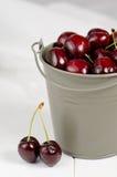 Cherries. In metal pail, closeup Royalty Free Stock Images