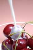 Cherries with milk III stock image