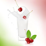 Cherries with milk splash. Over white Stock Photography