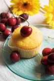Cherries and muffin Royalty Free Stock Photo