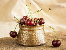 Cherries in a mug Stock Images