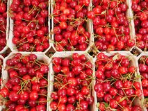 Cherries organic market Royalty Free Stock Photography
