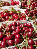 Cherries organic market Stock Photo