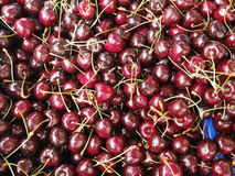 Cherries organic market Royalty Free Stock Image