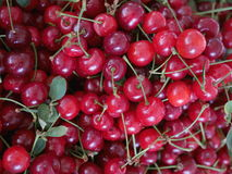 Cherries organic market Royalty Free Stock Photos