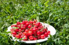 Cherries plate Royalty Free Stock Photo