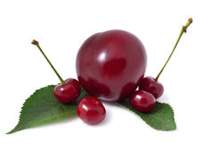 Cherries and plums Royalty Free Stock Photography