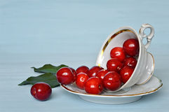 Cherries in a porcelain cup Stock Photos