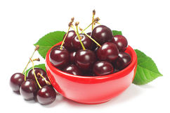 Cherries in red bowl Royalty Free Stock Photos
