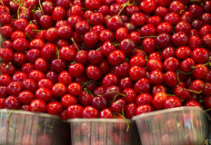 Cherries. Red cherries in the market Royalty Free Stock Photo