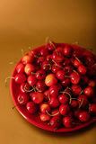 Cherries on a red plate on a gold background. Stock Photos