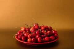 Cherries on a red plate on a gold background. Stock Images