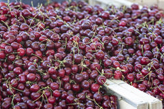 Cherries. Ripe cherries on a market in France Royalty Free Stock Image