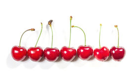 Cherries in a row Stock Photos