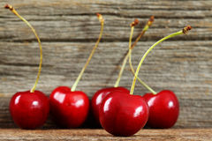 Cherries in a row Royalty Free Stock Image