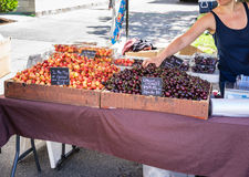 Cherries for sale Royalty Free Stock Image