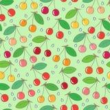 Cherries seamless pattern Stock Image