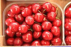 Cherries seasonal fruit farming Emilia Romagna Italy Stock Photo