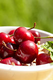 Cherries, shallow dof Royalty Free Stock Photography
