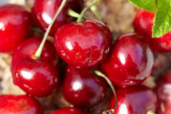 Cherries, shallow dof Stock Images