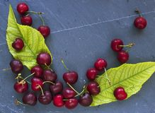 Cherries on slate slab. Cherries with leaves on gray slate slab stock photography