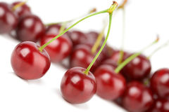 Cherries solated Royalty Free Stock Photography