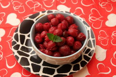 Cherries. Some cooked red cherries with a sauce of sugar Royalty Free Stock Image