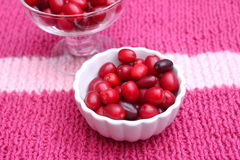 Cherries. Some cornel cherries in a bowl royalty free stock photography