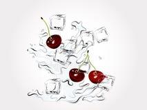Cherries in splash. Fresh cherries in water splash vector illustration