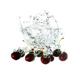 Cherries splash on water, isolated on white background Royalty Free Stock Photos