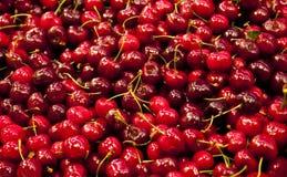 Cherries and Stems Stock Photo