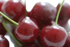 Cherries on stems Royalty Free Stock Photography