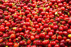 Cherries and Stems Stock Photos