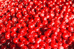 Cherries in sugar syrup, close-up Stock Photos