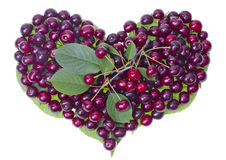 Cherries summer fruit heart Royalty Free Stock Photo