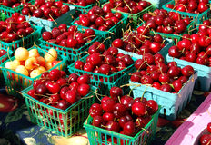 Cherries in the Sun. Baskets of juicy cherries on sale at a farmer's market stock photos