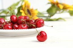 Cherries with sunflowers Stock Images