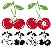 Cherries. Sweet cherries in color and black and white vector illustration Royalty Free Stock Image