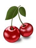 Cherries. Sweet juicy ripe cherries couple Stock Photos