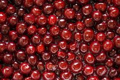 Cherries with syrup Royalty Free Stock Photography