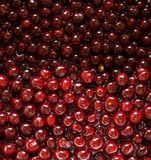 Cherries with syrup Stock Photos