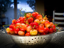 Cherries on the table. Freshly picked first tasty cherries Stock Photo
