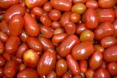 Cherries tomatoes Royalty Free Stock Photo