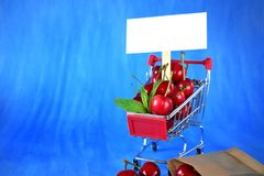Cherries in a trolley and a white card. For text against blue background Stock Images