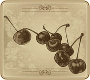 Cherries with vintage frame, hand-drawing. Vector illustration. Royalty Free Stock Image