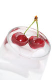 Cherries in Water royalty free stock photos
